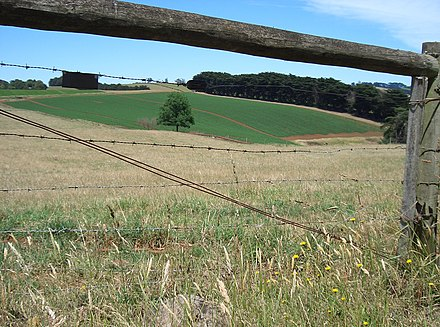 Potato farming in rural Victoria. Potato field through fence - Thorpdale.JPG