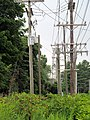Power lines on Trolley Way, Westbrook, CT.JPG