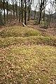 Prehistorische grafheuvels bij Toterfout - Halve Mijl 02.JPG