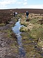 Puddle on path west of Dunkery Beacon - geograph.org.uk - 1283283.jpg