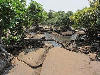 Kalandula Falls - Image: Quedas Kalandula 03 agua chega LWS 2011 08 QD26