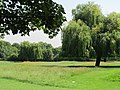 Queens Park - geograph.org.uk - 2540040.jpg