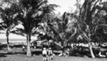 Queensland State Archives 313 The picnic area at Nielson Park Burnett Shire c 1931.png