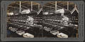 Quilling. Silk industry, South Manchester, Conn., U.S.A, by Keystone View Company.png