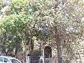 REHAV VIEW 2 20120911 131651.jpg