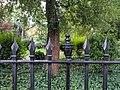 Railings Around Clapton Square Garden.jpg