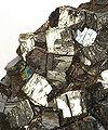 Ramsdellite-ram-07b.jpg