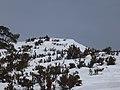 Raquetada Tossal del Rei (1350m) 058.JPG