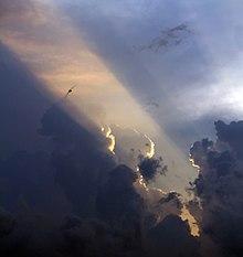 Rayon de soleil et hirondelle 2.jpg