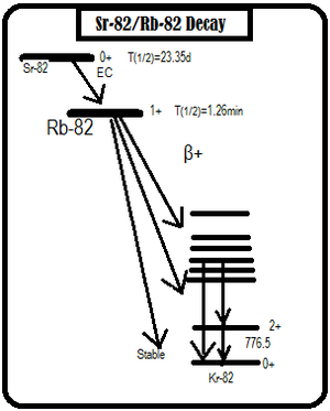 Rubidium-82 - The decay of Rubidium-82, which undergoes positron emission.
