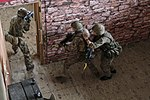 Red Falcons team up with British 3 PARA 140722-A-DP764-341.jpg