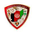 Regimental Combat Team 3 Afghanistan logo 01.jpg