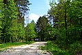 Revushky Turiiskyi Volynska-place of formation of UPA platoons-entrance.jpg