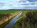Rhyne, near Butleigh Wootton - geograph.org.uk - 730598.jpg