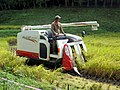 Rice Harvester (31509909955).jpg