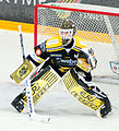 Richard Ullberg - SaiPa 2011.jpg