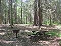 Ricketts Glen State Park Picnic Area.jpg