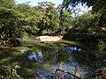 Rio Carandaí no bairro Colônia - panoramio.jpg