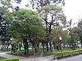 Rio branco square.jpg