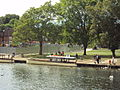 River Avon at Stratford-upon-Avon - DSC08975.JPG