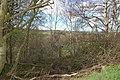 River Browney through trees above Throstle nest Farm - geograph.org.uk - 398303.jpg