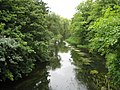 River Colne in Cowley - geograph.org.uk - 942384.jpg