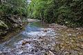 River Mali Rzav and Visocka Banja Spa in Serbia - 4283.NEF 04.jpg