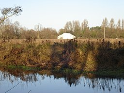 River Wensum Hellesdon Meadow