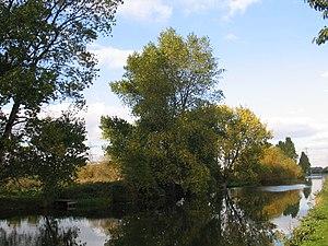 Tottenham Marshes - Wild Marsh West seen across the River Lea
