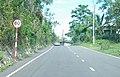Road Outside Sligoville.jpg