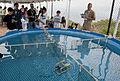 RoboSub Competition 130726-N-SH505-110.jpg