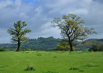 Caersws Roman Forts - Site of the campaign fort east of Caersws