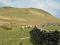 Round The Dyke - geograph.org.uk - 378952.jpg