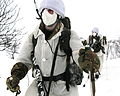 Royal Marine Reservists Training in Norway MOD 45156924.jpg