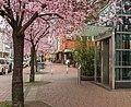 Ruettenscheider-Straße-Martinstraße-Frühjahr-2016.jpg