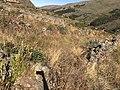 Ruinas en el camino de Incallajta.jpg
