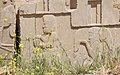 Ruins and Wildflowers, Persepolis, Iran (4693714002).jpg