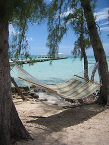 Image Result For Cayman Islands Pirate