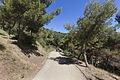 Rutes Històriques a Horta-Guinardó-parc forestal 02.jpg