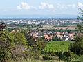 Sélestat depuis Kintzheim (2).jpg