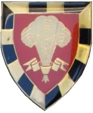 1 South African Infantry Battalion - SANDF 1 SAI emblem