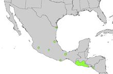 Sabal mexicana intervall karta.png
