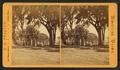 Salem Common, by G. K. Proctor.png