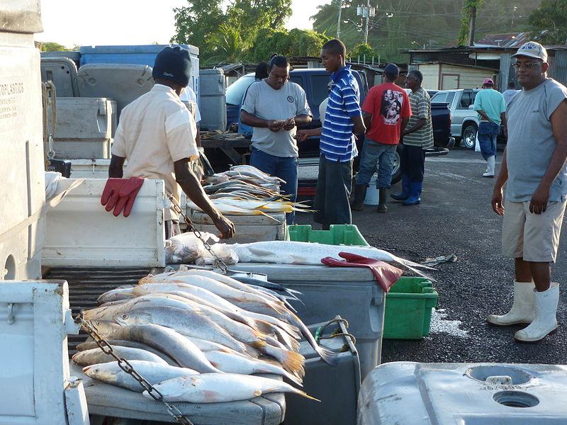 File:San Fernando Fish Market, Trinidad and Tobago.JPG