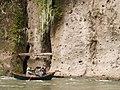 Sandy River Gorge, Oregon - panoramio.jpg