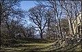 Sasadilo-Orkhevi-Khevsurtsopeli, Kochbaani, Georgia - panoramio (16).jpg