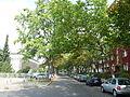 Schöneberg Kufsteiner Straße.jpg