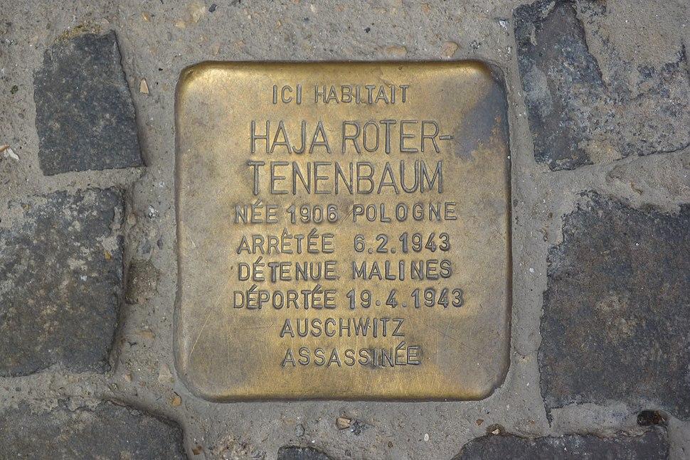 Schaerbeek 41 rue de la Chaumière - Pavé de la mémoire Haja Roter-Tenenbaum
