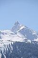 Schwarzhorn2460m.jpg