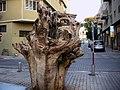 Sculpture made from tree in Jaffa Tel Aviv - panoramio.jpg